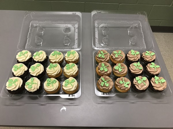 cold weather shelter cupcakes
